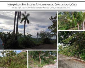 168sqm Lots For Sale El Monteverde Consolacion Cebu