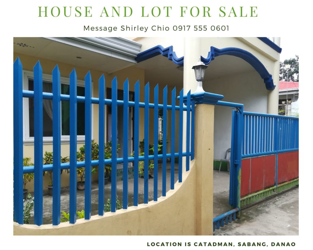 2 Storey House And Lot With Spacious Balcony For Sale In Danao