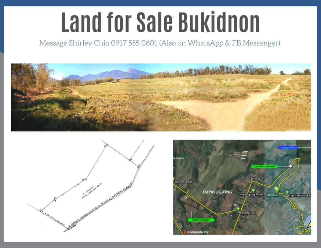 Land for sale Impasug-ong Bukidnon Philippines