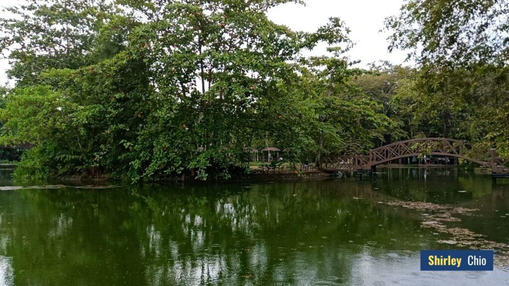 The Cascades Nature Park Compostela Cebu Philippines