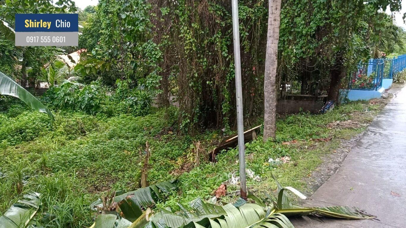 Lot for Sale in Casili Consolacion Cebu Philippines